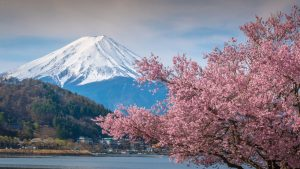 Mount Fuji is included in Japan tours offered by Asia Vacation Group.