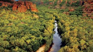Kakadu National Park and Tiwi island in the Northern Territory