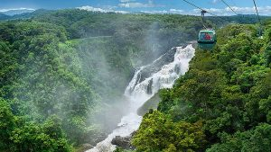 Skyrail Rainforest Cableway In Cairns